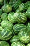 Watermelons2 Stock Afbeeldingen