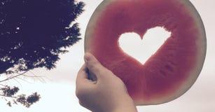 Watermelove Στοκ Εικόνες