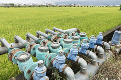 Watermeters for paddy field Royalty Free Stock Images