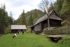 Watermill, Kvacany,斯洛伐克 免版税库存图片