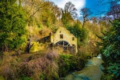 Watermill arruina em uma floresta imagem de stock royalty free