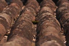 Watermill-Dach Lizenzfreie Stockfotos
