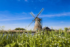 Watermill in the Dutch landscape Stock Photography