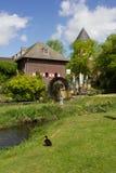 watermill med slotten Royaltyfri Foto