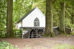 Watermill mit Schaufelrad im Wald Stockbild