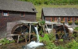 Watermill, zwart bos, schwarzwald, Duitsland Stock Foto's