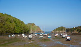 Watermouth harbour North Devon coast near Ilfracombe uk. In summer with boats royalty free stock photos