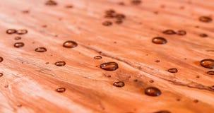 Waterparels omhoog op mooie vers verzegelde ceder houten 3d illustratie Stock Afbeeldingen