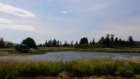 Waterplane landing, sea plane. Float plane landing at lake in Canada stock video