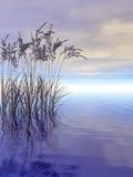Waterplanten Royalty-vrije Stock Foto
