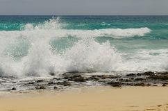 Waterplons op het strand Royalty-vrije Stock Foto