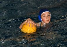 waterpolo Obraz Stock