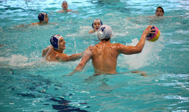 Waterpolo Fotografia Stock