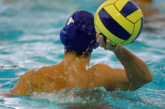 Waterpolo 22 Stock Photography