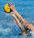 Waterpolo action. Two waterpolo players in actions during a match Stock Photo