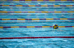 Waterpolo ball in swimming lan Stock Photography