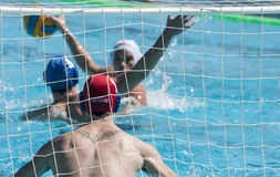 WATERPOLO MATCH Royalty Free Stock Image
