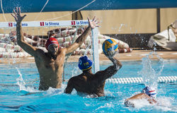 WATERPOLO MATCH - MATARO vs ATL. BARCELONETA Royalty Free Stock Images
