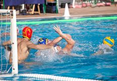 Waterpolo player Stock Image