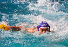 Waterpolo player like an alligator Stock Photography