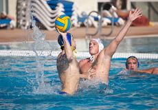 Waterpolo players royalty free stock images