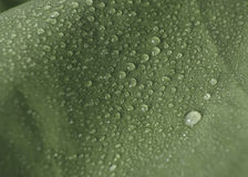 Waterproof fabric closeup. Closeup detail of green water proof jacket material Royalty Free Stock Images
