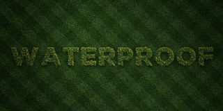 WATERPROOF - fresh Grass letters with flowers and dandelions - 3D rendered royalty free stock image Stock Photos