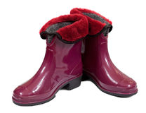 Waterproof gum boots Stock Photography