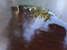 Waterreflection. Water reflection double expouser noedit no filter Royalty Free Stock Photo