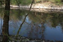Waterreflects Foto de archivo libre de regalías