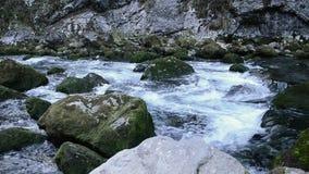 Waterrimpelingen Oppervlakte van het water Abchazië stock videobeelden