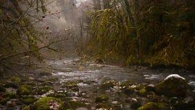 Waterrimpelingen Oppervlakte van het water Abchazië stock video