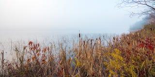Waters edge in early morning fog on a lake near Ottawa, Ontario. Stock Photo