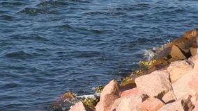 Waters and pebbles stones. A birds eye view shot of waters and pebbles stones stock video