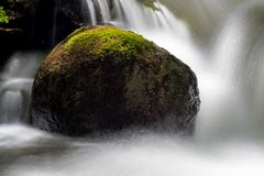 Close-Up Of A Moss Covered Rock Surrounded By Water. The waters of Pine River in Ontario, Canada make their way over and between the moss covered rocks royalty free stock photo