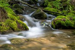 Water Tumbling Between The Moss Covered Rocks. The waters of Pine River in Ontario, Canada make their way over and between the moss covered rocks stock images