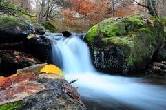 waterscape Arkivbild