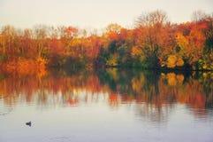 Waterscape d'automne Images libres de droits