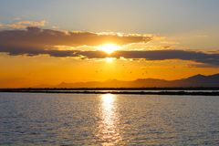 Waterscape solnedgång Royaltyfri Bild