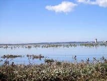 Waterscape: Un mundo del azul Foto de archivo libre de regalías
