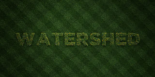 WATERSHED - fresh Grass letters with flowers and dandelions - 3D rendered royalty free stock image. Can be used for online banner ads and direct mailers Royalty Free Stock Photography