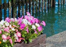 Waterside Colour Stock Photo
