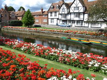 Waterside flowers and grass overlooking the river that runs through the town stock image