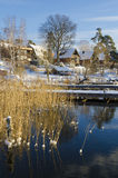 Waterside houses early winter Royalty Free Stock Photo