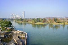 Waterside plants and trees in sunny winter morning. Chengdu,China Stock Images