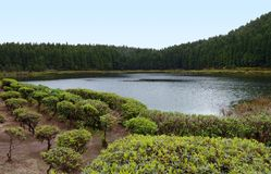 Waterside scenery at the Azores Royalty Free Stock Photos