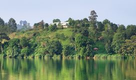 Waterside scenery near Rwenzori Mountains Royalty Free Stock Photo