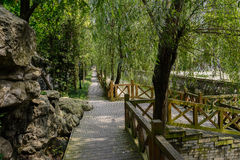 Waterside shady planked footpath in verdant summer Royalty Free Stock Image