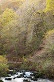 Watersmeet in autunno Fotografia Stock Libera da Diritti