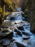 Watersmeet Devon Αγγλία Στοκ Εικόνες